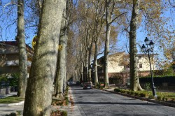 Viale San Modestino 6