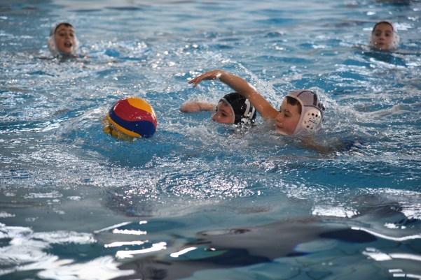 manifestazione piscina 5