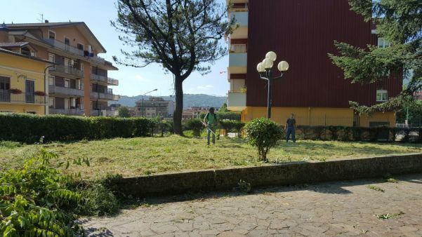 verde_4