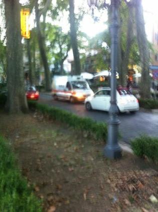 Cade ramo in viale San Modestino2