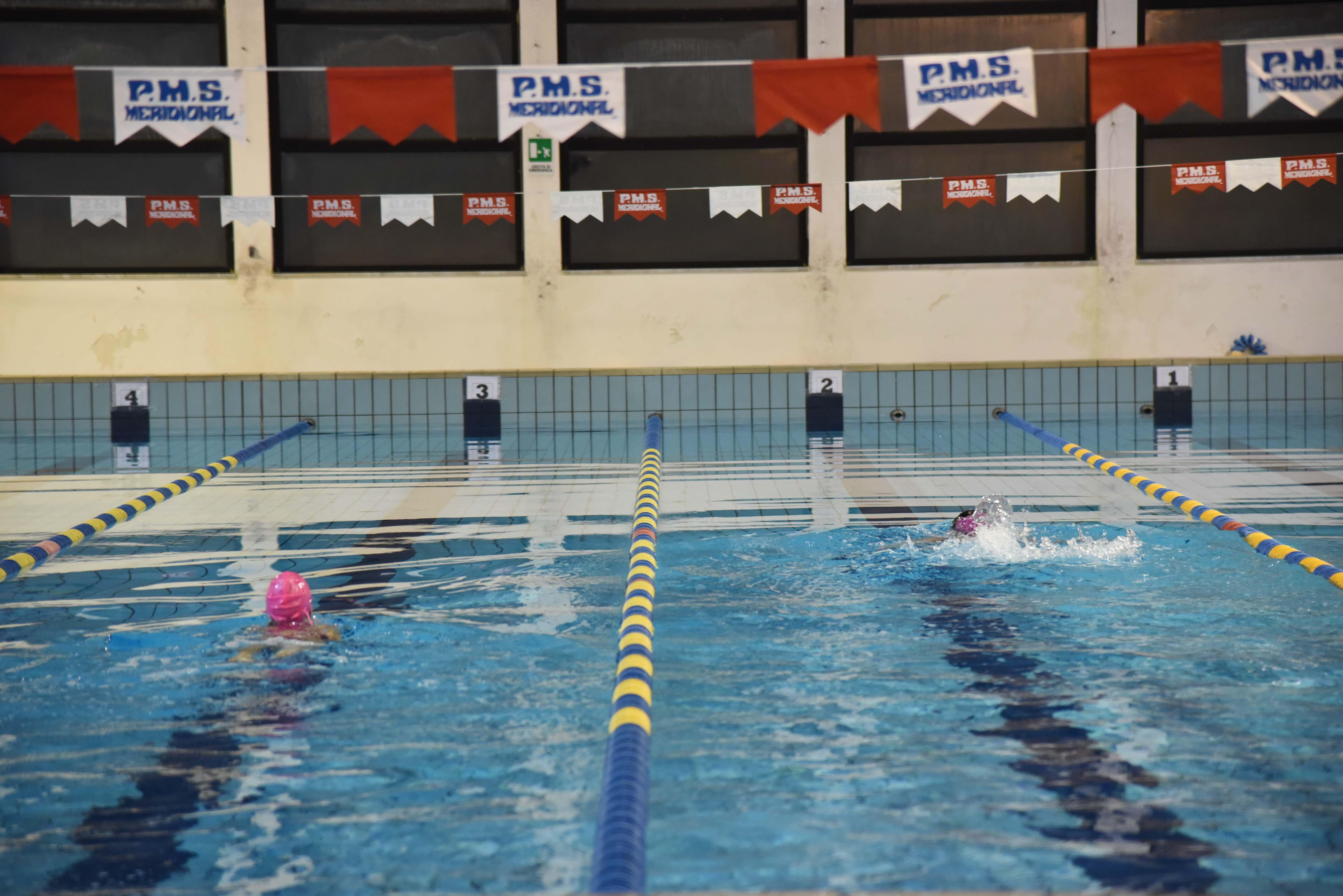 Grande successo per l 39 evento di natale della piscina for Piani di progettazione della piscina