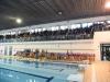 natale piscina 5